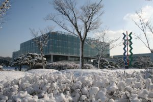 Winter at KAIST: The new KI building for interdisciplinary research