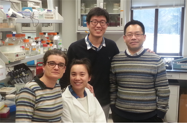 Professor Jae Kyoung Kim (third from left) and the Virginia Tech Research Team